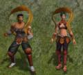 Guerreiro Mestre 1.PNG
