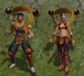 Guerreiro Mestre 3.PNG